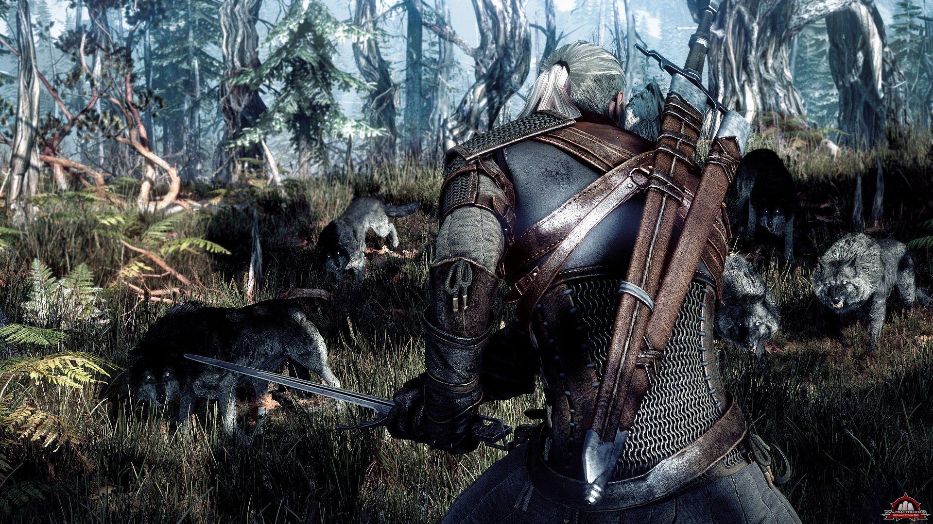 Cd Projekt Opowiada O Możliwościach Zmiany Wyglądu Geralta W