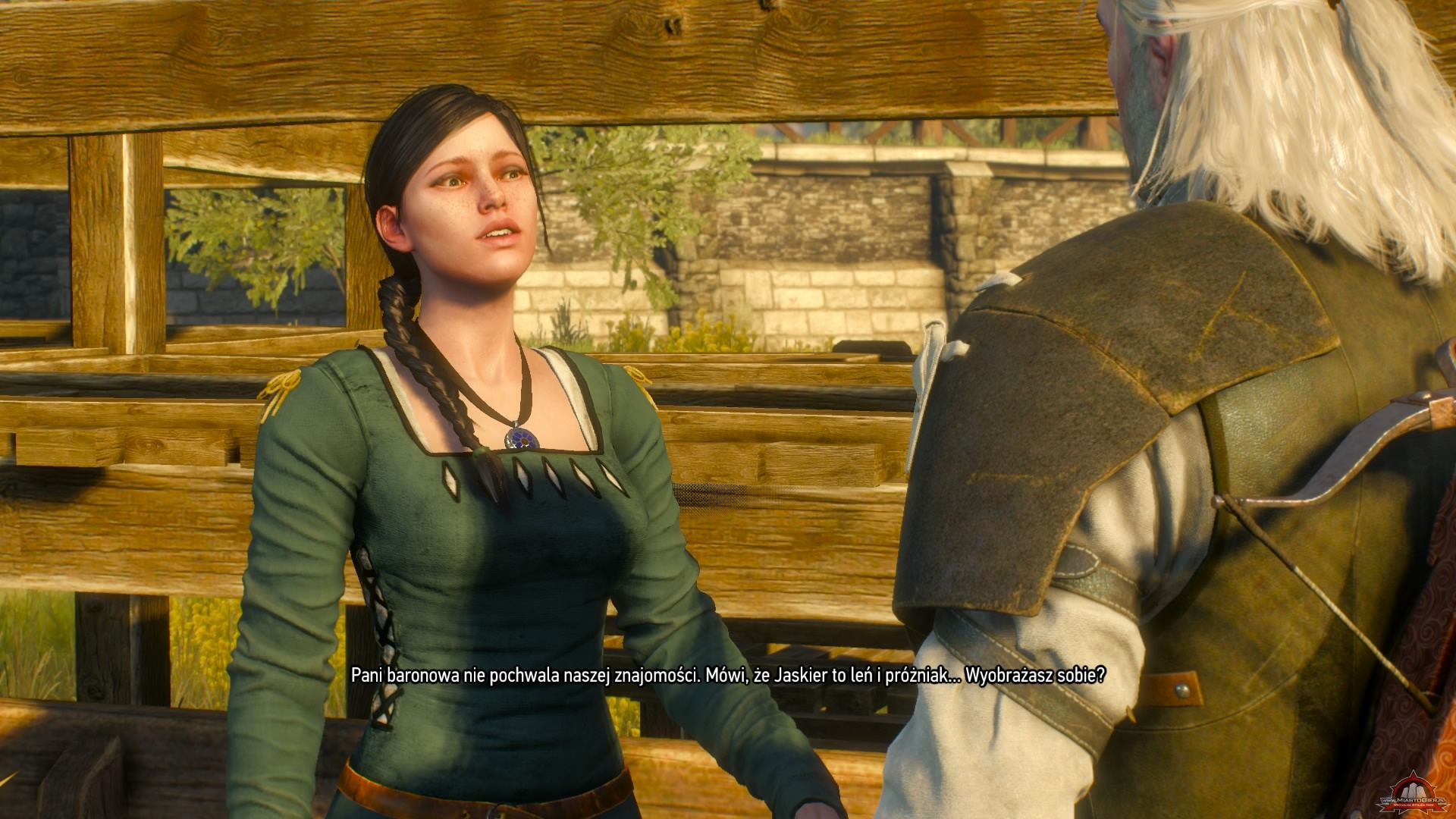 The witcher 3 vespula protection